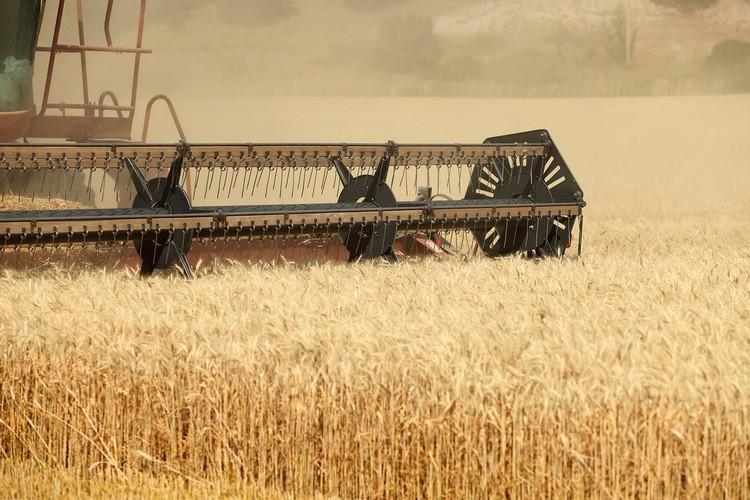 foto-Agroalimentario